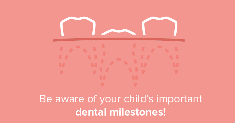 Be aware of your child's important dental milestones.